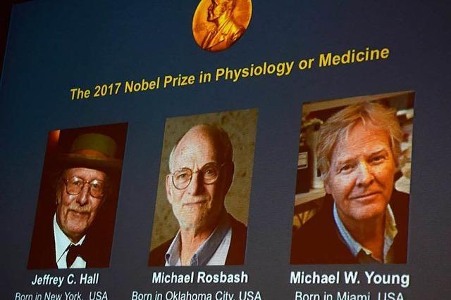 Medizinnobelpreis geht an drei US-Amerikaner für Forschung zur biologischen Uhr