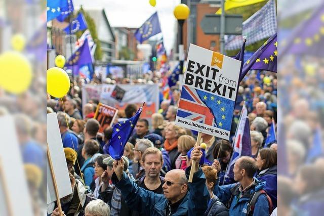 EU-Abgeordnete appellieren an May