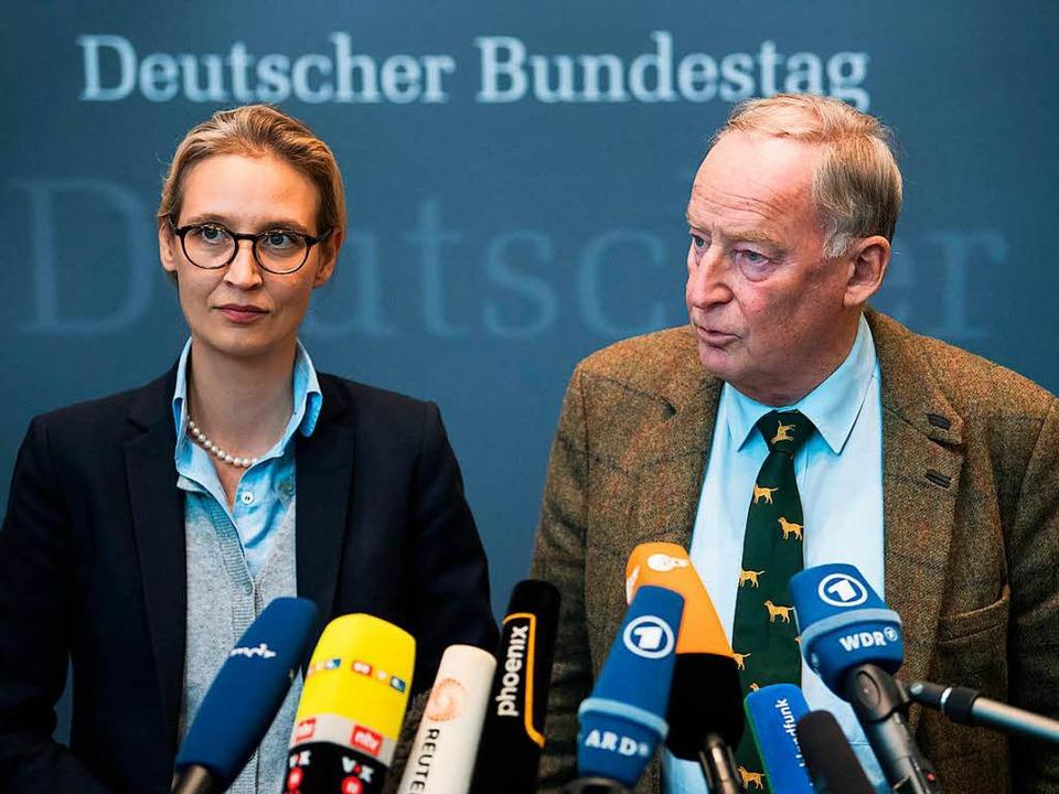 Die Fraktionsvorsitzenden der AfD im D...der Bundestagsfraktion vor der Presse.  | Foto: dpa