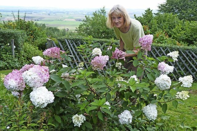 Ein Garten mit Aussicht auf die Baar