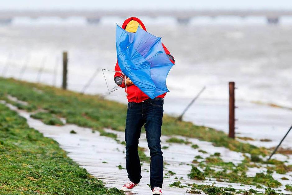 Sturmtief Xavier zieht mit starken Sturmböen über Teile Norddeutschlands hinweg. Auch über diesen Deich an der Nordseeküste bei Hooksiel in Niedersachsen. (Foto: dpa)
