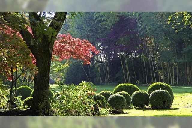 Workshops und Gartenführungen in Hertingen
