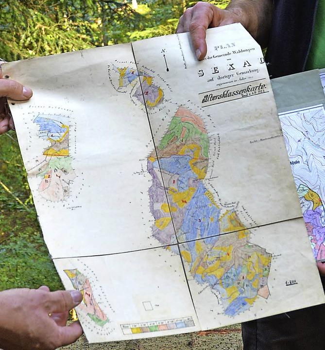 Diese alte Karte der Sexauer Waldgebiete wurde noch mit Buntstiften gemalt.    Foto: Benedikt Sommer
