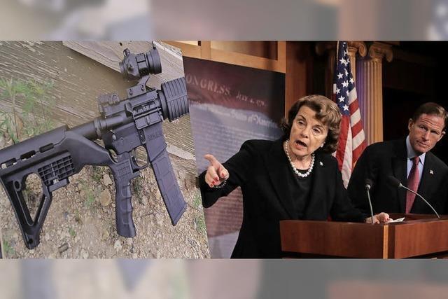Anlauf zu Minireform der Waffengesetze