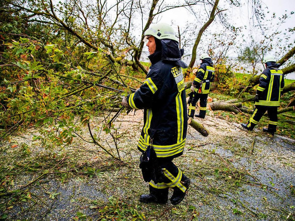 Mehrere vom Sturm umgestürtzte Bäume w...lenberger Wieck bei Wismar weggeräumt.  | Foto: dpa