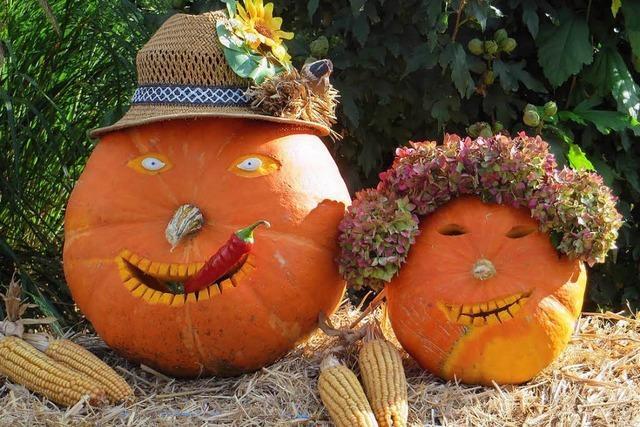 Sechs Tipps für das Wochenende in Südbaden
