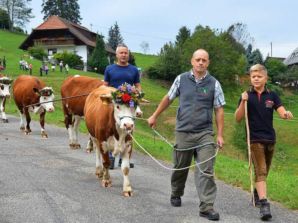 Mit Blumen geschmückt werden die Rinde...vom Brandenhof zurück ins Tal geführt.    Foto: Hennicke Gabriele