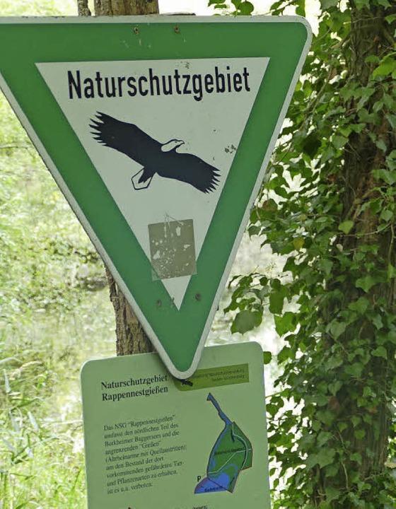 Hinweis auf das Naturschutzgebiet Rapp...eliebende Pflanzen in den Trockenauen.  | Foto: Jonas Hirt