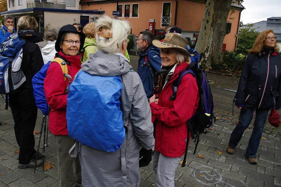 Von Badenweiler auf den Blauen und wieder zurück – von dieser Tour ließen sich die BZ-Wanderer auch vom Regen nicht abhalten. (Foto: Martin Pfefferle)