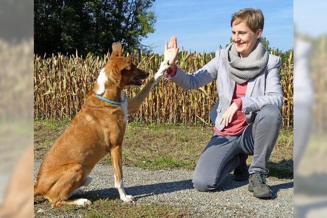 Den eigenen Weg finden – mit Hund