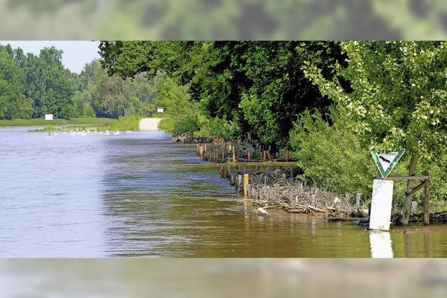Besserer Hochwasserschutz für Rheinhausen