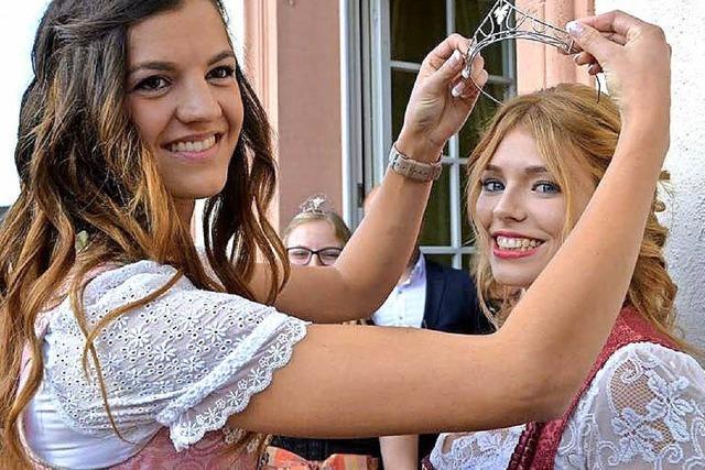 Der Musikverein Diersburg feiert das 50. Weinfest