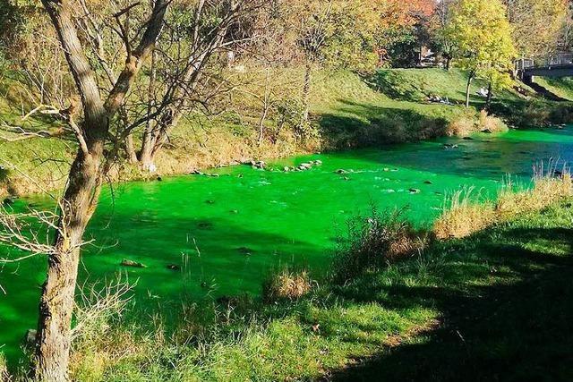 Stoff Uranin färbte wohl die Dreisam grün