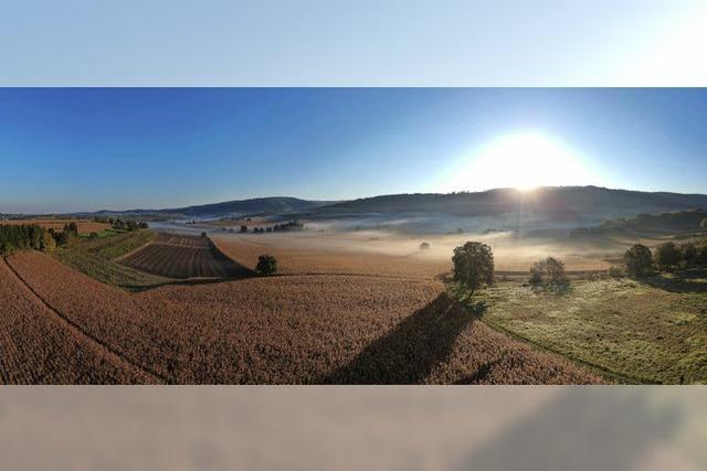 Der Herbst bei Münchweier