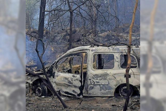 Feuerwehren kämpfen gegen Flammenwände