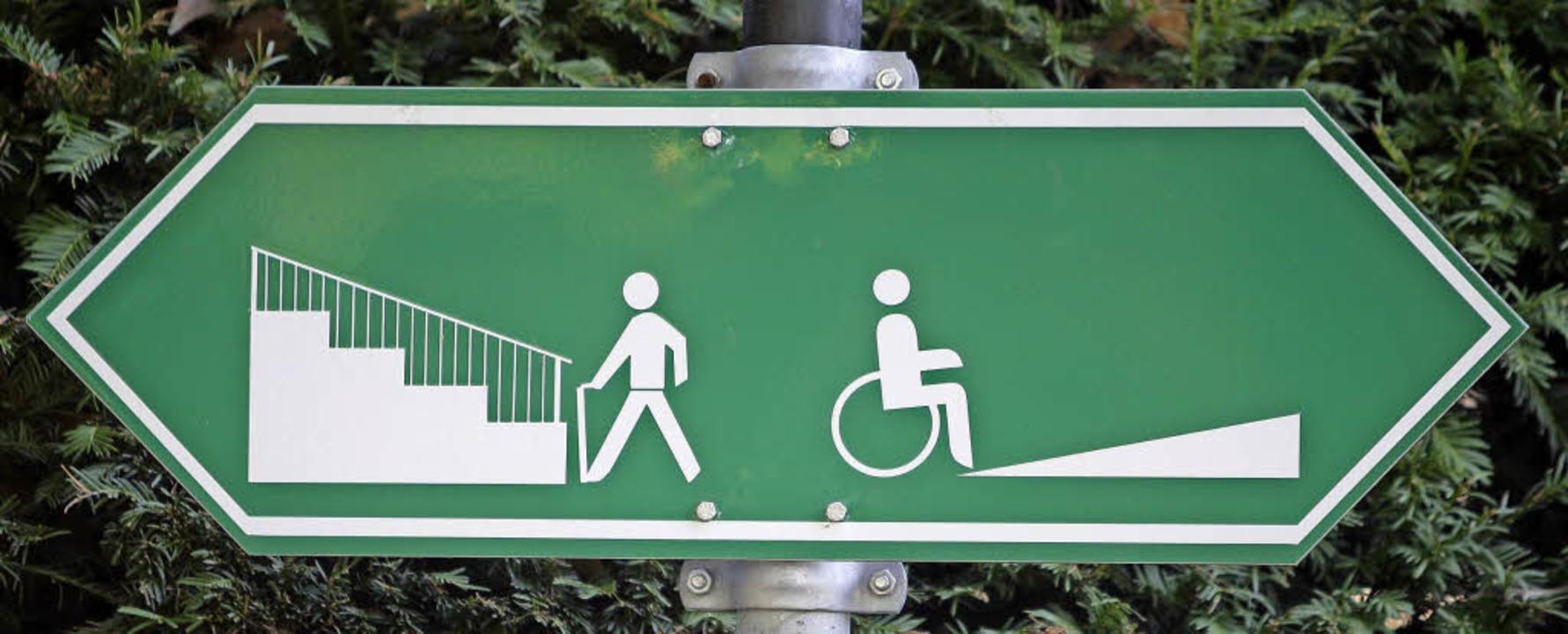 Im Landkreis soll  jeder Mensch seinen...211; egal ob mit oder ohne Rollstuhl.   | Foto: dpa/Privat