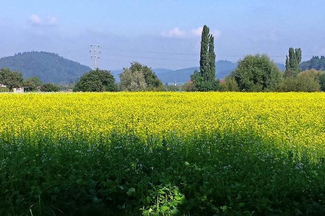 Toskana oder Piemont?