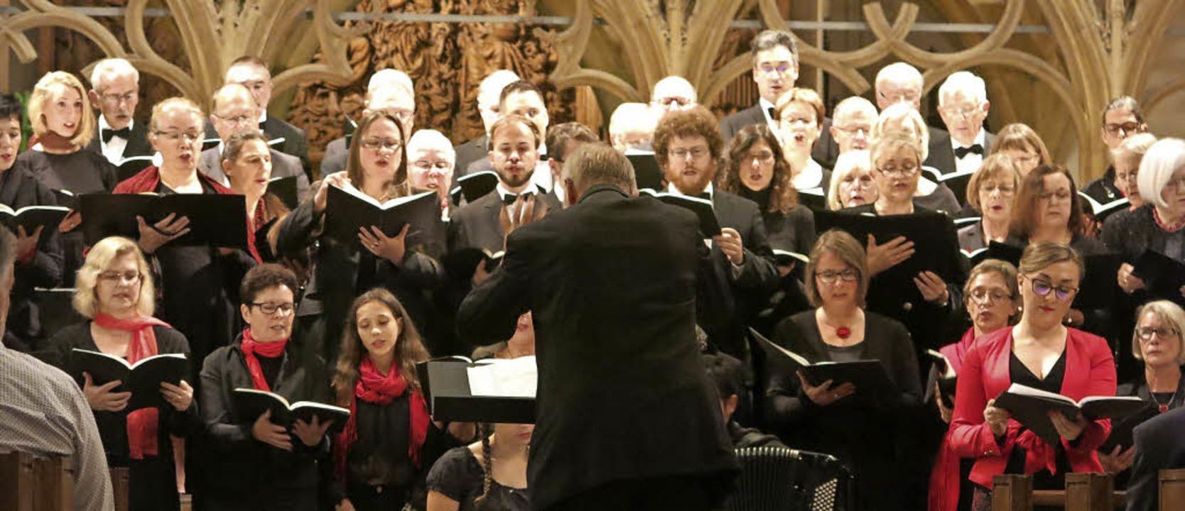 Das Breisacher Vocalensemble bei seinem Auftritt im Breisacher Münster   | Foto: Claudia Müller