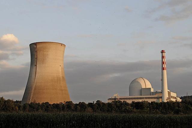Reaktor ohne neue Befunde