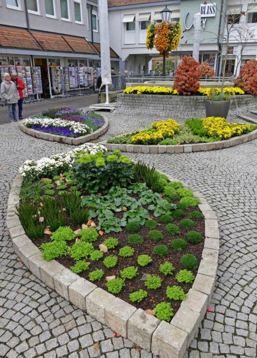 Die drei Blüten des Landesgartenschau-...beete vor dem Café Burger zu  sehen.    | Foto: christian Kramberg