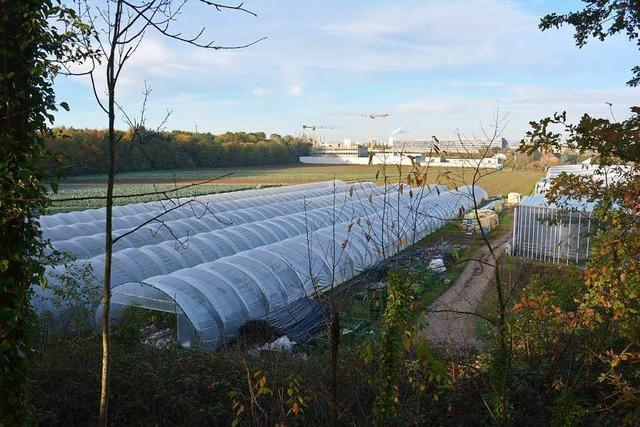Weil am Rhein plant Wohnbaugebiet an der Schweizer Grenze