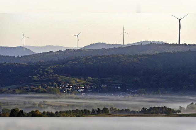 Rückenwind für die Waldbilanz