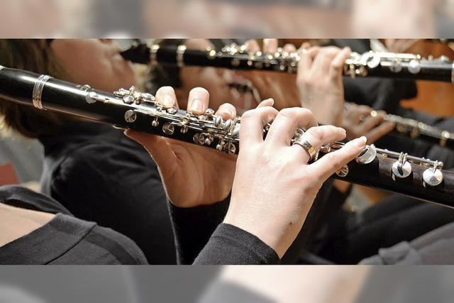 Junge Musiker unter die Fittiche nehmen