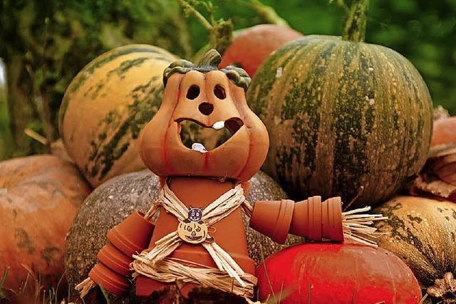 Halloween-Tage in Waldkirch