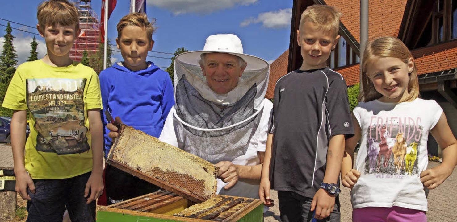 Imker Bernhard Heer wird die Welt der Bienen vorstellen.   | Foto: Privat