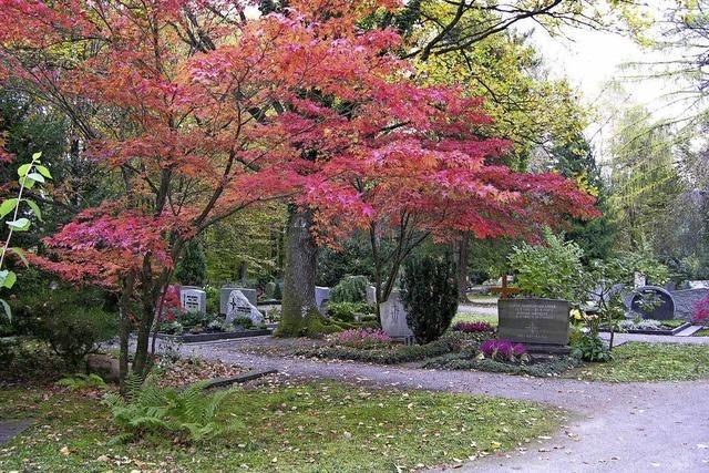 Alternative Gräber auf den Friedhöfen