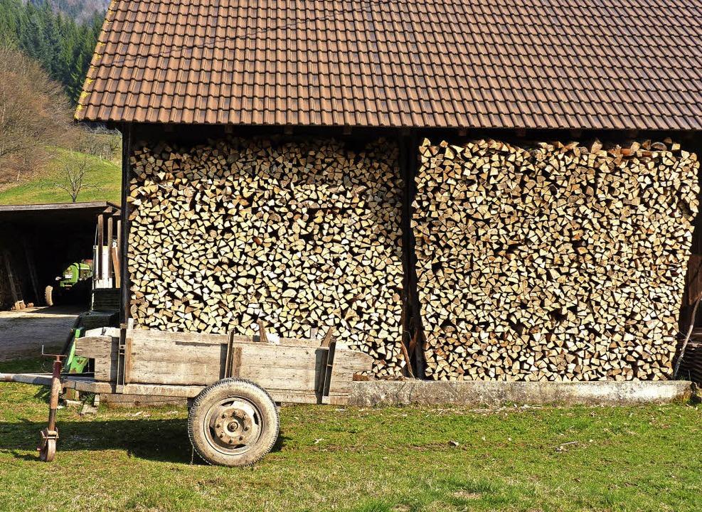 Für die Nachhaltigkeit und den Holzein...uständig, nicht das Biosphärengebiet.     Foto: dsa