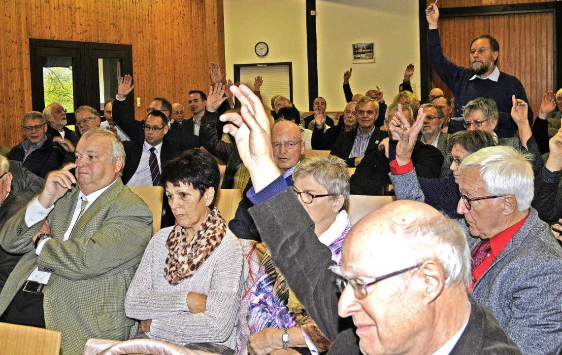 Hitzig diskutierte die Mitgliederversa...e Entscheidung wurde auf März vertagt.  | Foto: Bettina Schaller