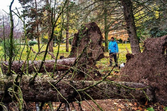 Sturm Herwart hinterlässt Tote und Verletzte