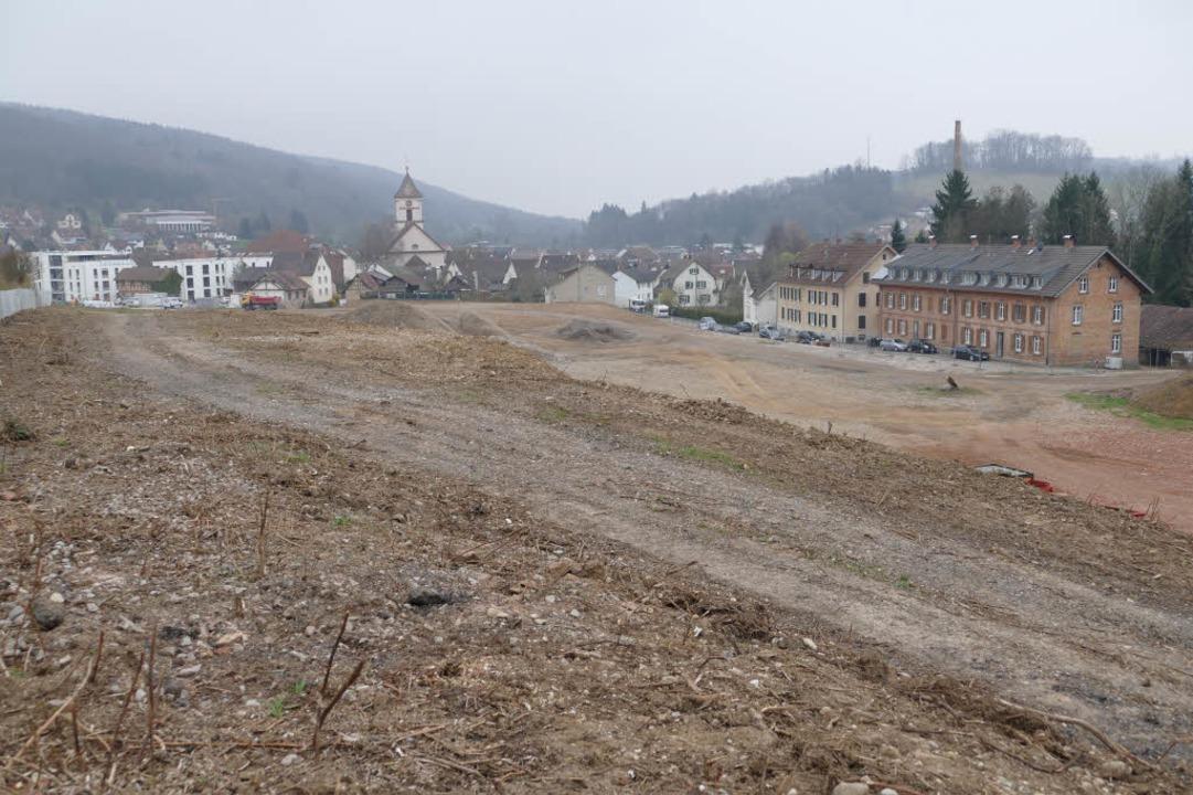 Die Fläche mit dem größten Entwicklungspotenzial bietet das Tonwerkeareal.  | Foto: Markus Maier