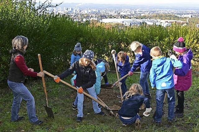 Kinder der Tschamberschule pflanzen zwei Birnbäume
