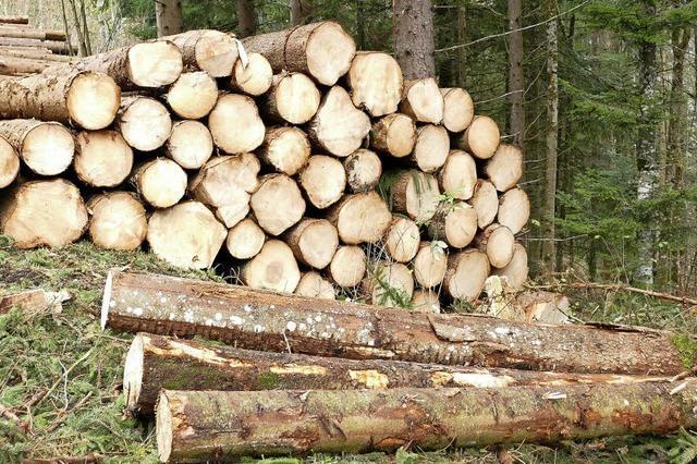 Stadt möchte beim Holzverkauf flexibel bleiben