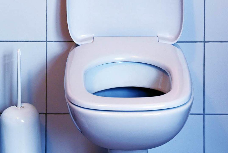 Toilette mit Klobrille.    Foto: dpa