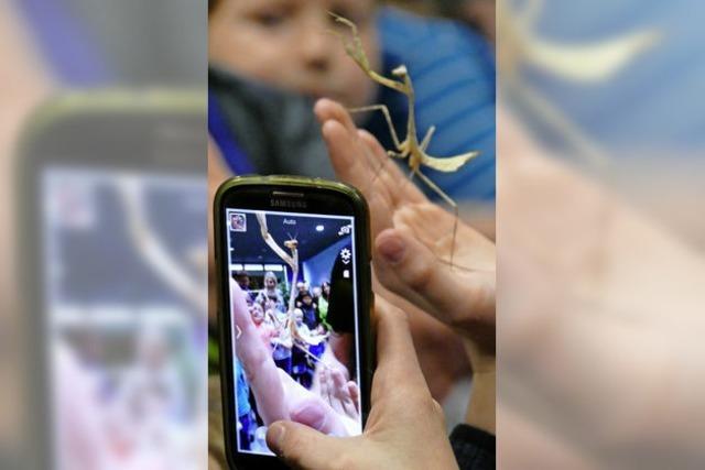 Wer hat Angst vor Riesenspinnen? – Wir doch nicht!