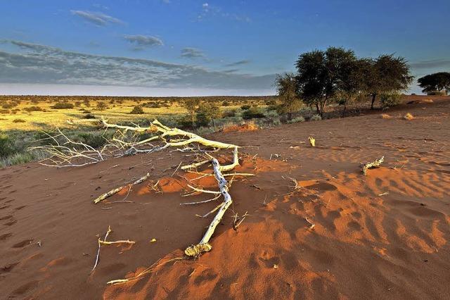 Wolfgang Bauer spricht über Botswana in Müllheim