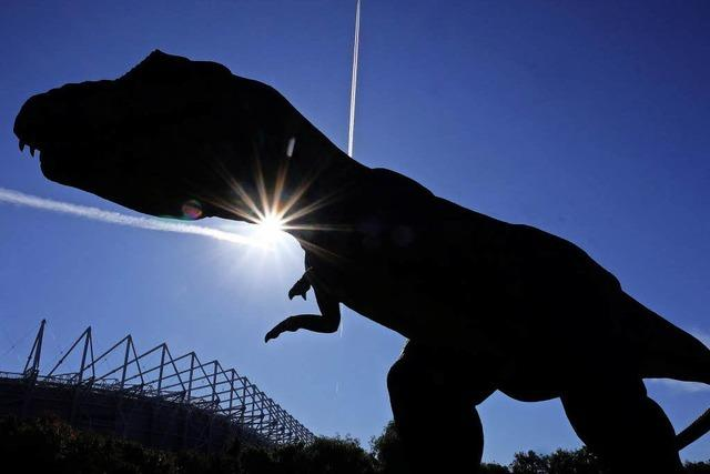 Säugetiere wurden wohl erst nach dem Aussterben der Saurier tagaktiv