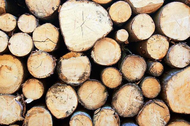 Welches Zertifikat nützt dem Forst im Südwesten?