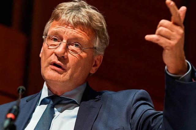 Fraktionschef Meuthen nimmt AfD-Mandat im Europaparlament an