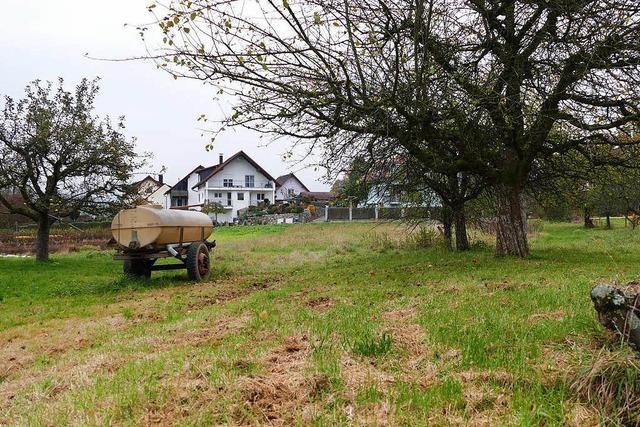 Umstrittener Bauantrag in Mappach: Ausschuss sagt ja zu Schafstall