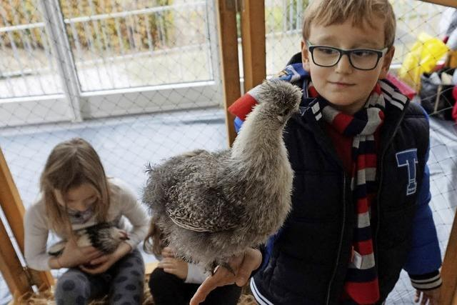 Tiere fest in Kinderhand