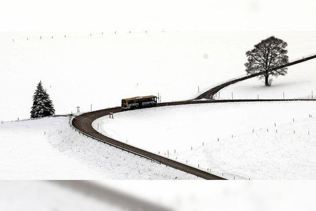 Der Winter im Testlauf
