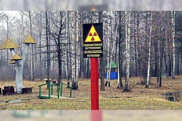 Wer weniger weiß, schläft besser. Tschernobyl-Sperrzone. Mit Merle Hilbk, Marcus Cordes-Schmid, Roland Hensler in Eisenbach