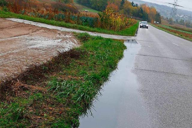 Gemeindestraße nach Binzen: Eimeldinger Rat will nur die Teilsanierung und lehnt Lkw-Fahrverbot ab