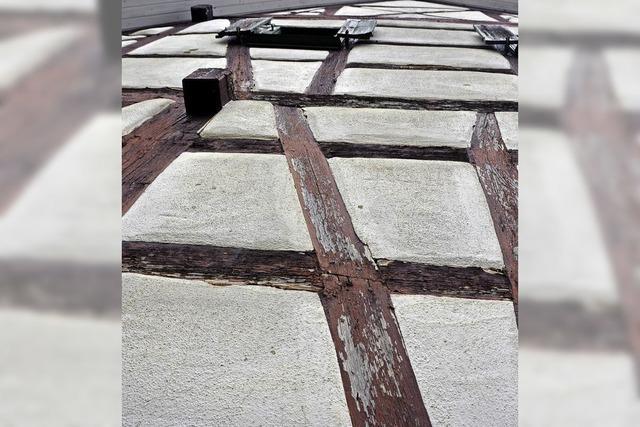 Dach des Gaus-Hauses bald fertig