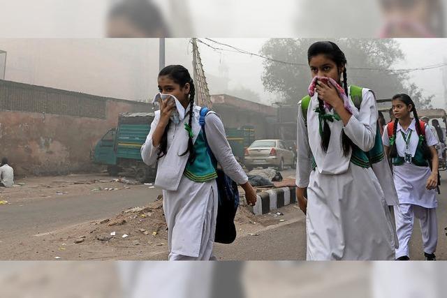 Behörden rufen in Indiens Hauptsatdt Gesundheitsnotstand aus