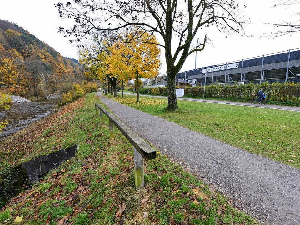Der Tatort: Links ein ein Meter breite...rgrund die Hecke mit Zaun zum Stadion.    Foto: ingo schneider